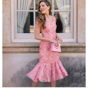 Gal meets glam rosemary pink mermaid dress size 18